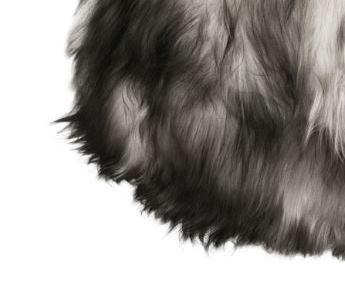 Dark tops long wool -mu/va/ha